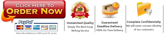 Guarantees of the essay writing service